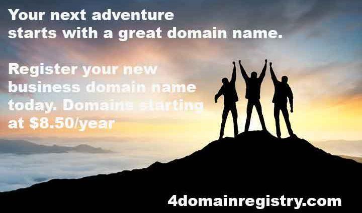 4-domain-registry