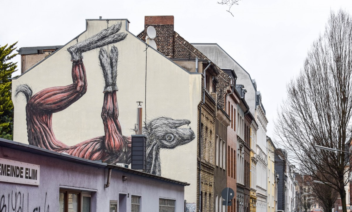 Ehhrenfeld street art ROA rabbit