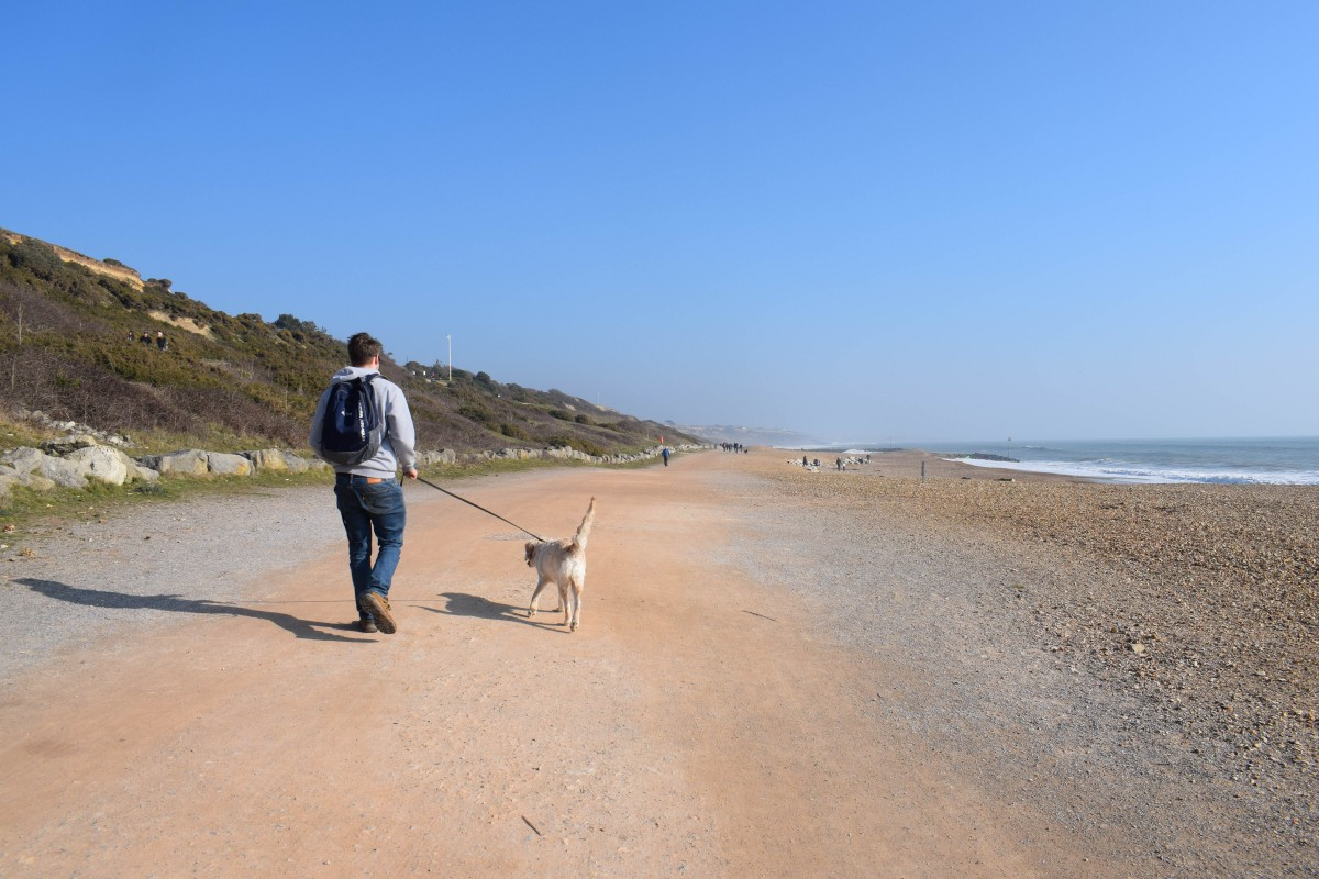 dog friendly beach highcliffe on sea dorset