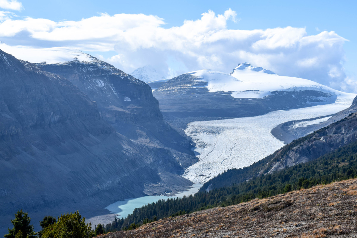 Parker Ridge Trail Icefields Parkway Canada