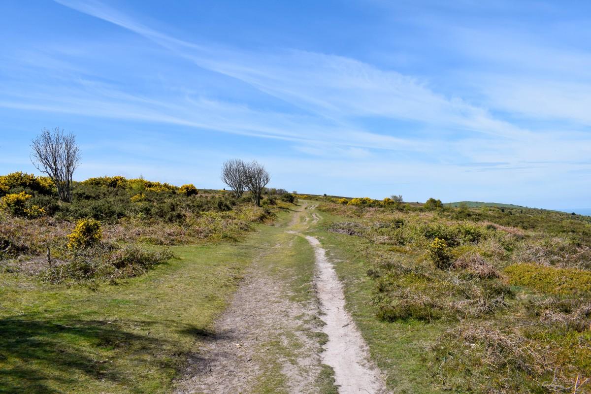Hiking the South West Coast Path Minehead to Porlock Weir