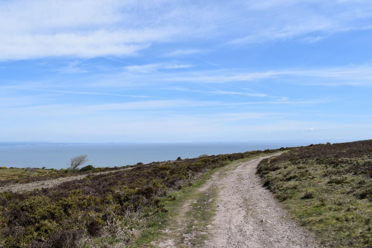 South West Coast Path Minehead to Porlock