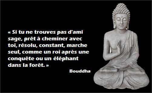 buddha_citations_Motivation_6
