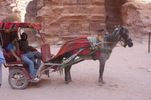 The carriage which drove us back to the entrance