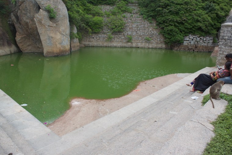 Pond in the Temple Premises