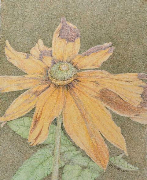 April Featured Artist: APRIL CHRISTENSON