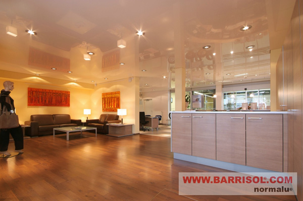 Eclairage intgr au plafond tendu  spots LEDs fibre optiques
