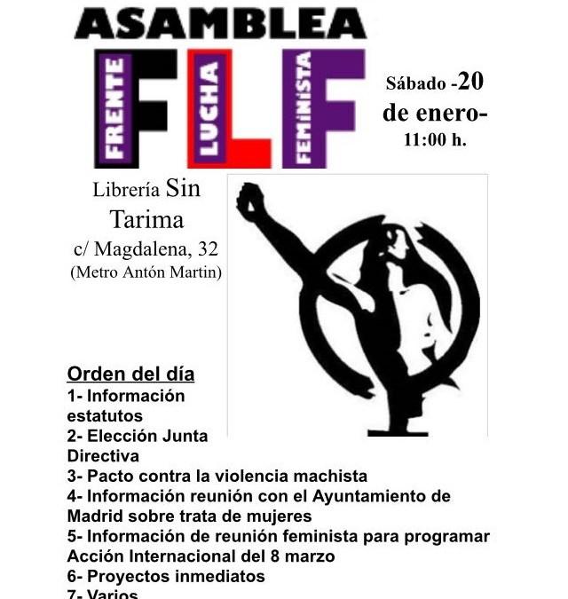Convocatoria Frente Lucha Feminista