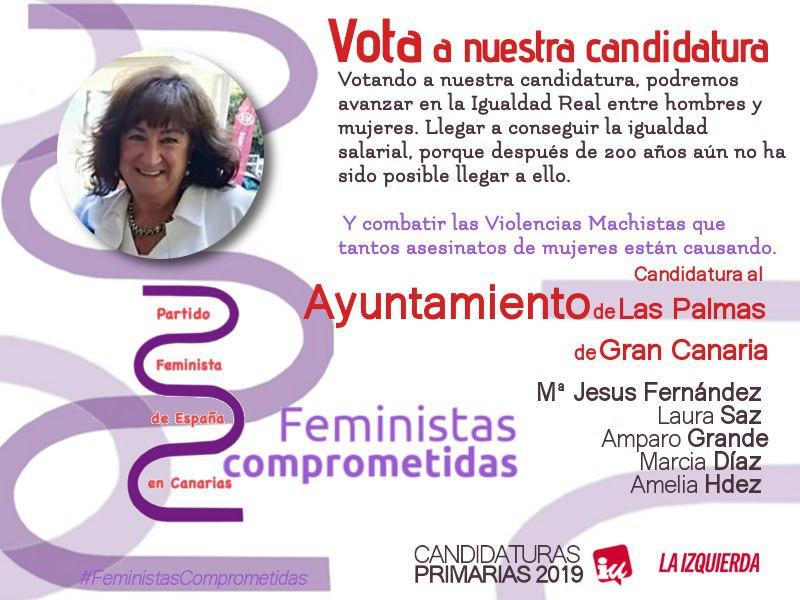 Candidatura al Ayuntamiento de Las Palmas de Gran Canaria