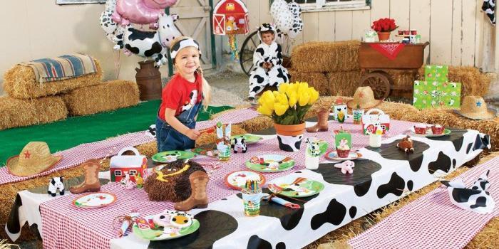 Barnyard Party Theme
