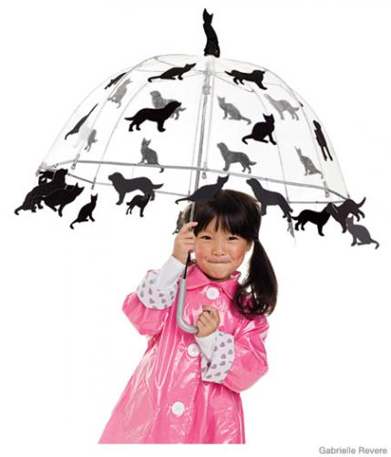 raining cats and dogs halloween costume
