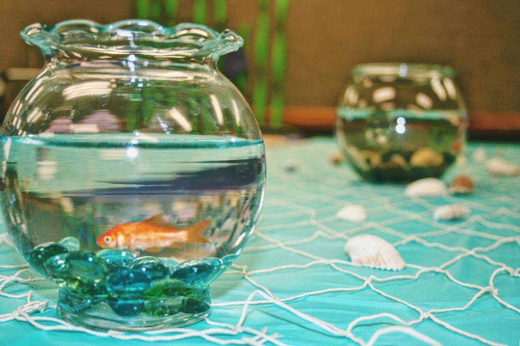 Cute DIY Under the Sea Baby Shower Ideas Table Decorations Live Fish