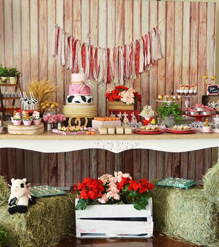 15 Girly Birthday Theme Ideas for Little Girls : Little Farmer Girl Party