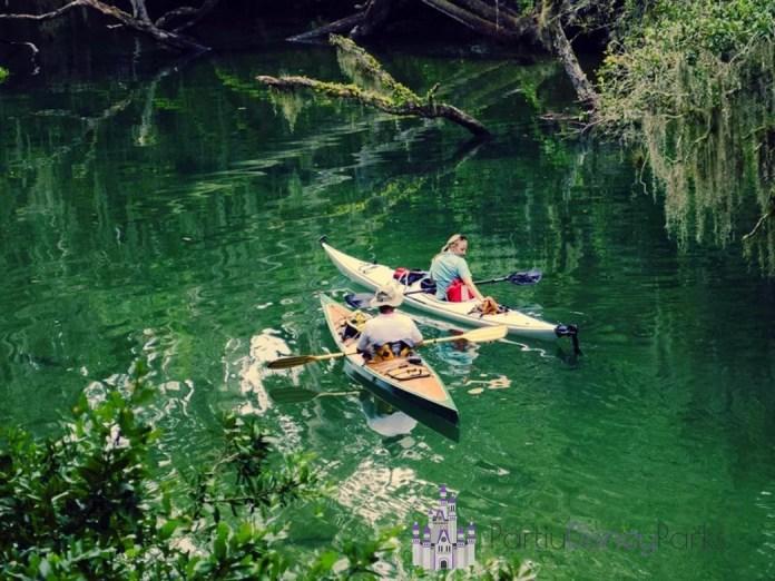 Голубая весна государственный парк каякинг