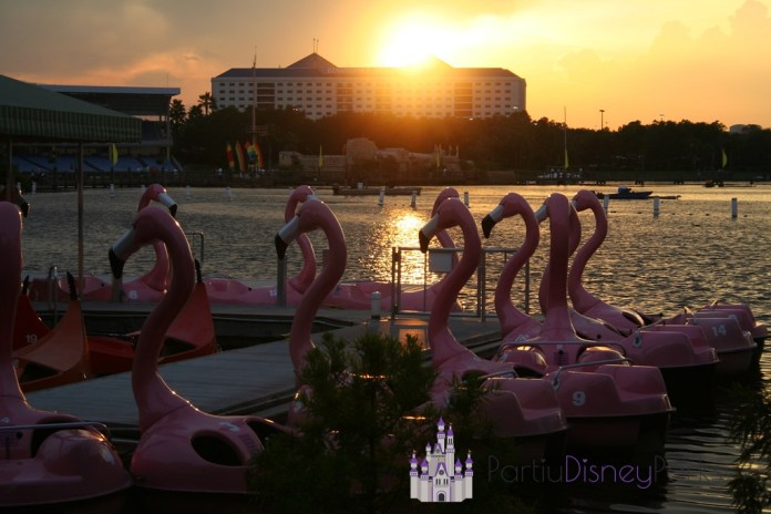 Flamingo Paddle Boats