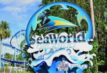 SeaWorld-Orlando-Entrance
