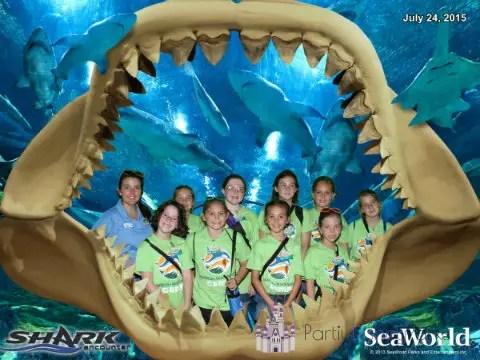 seaworld-summer-camp-2015-shark-encounter