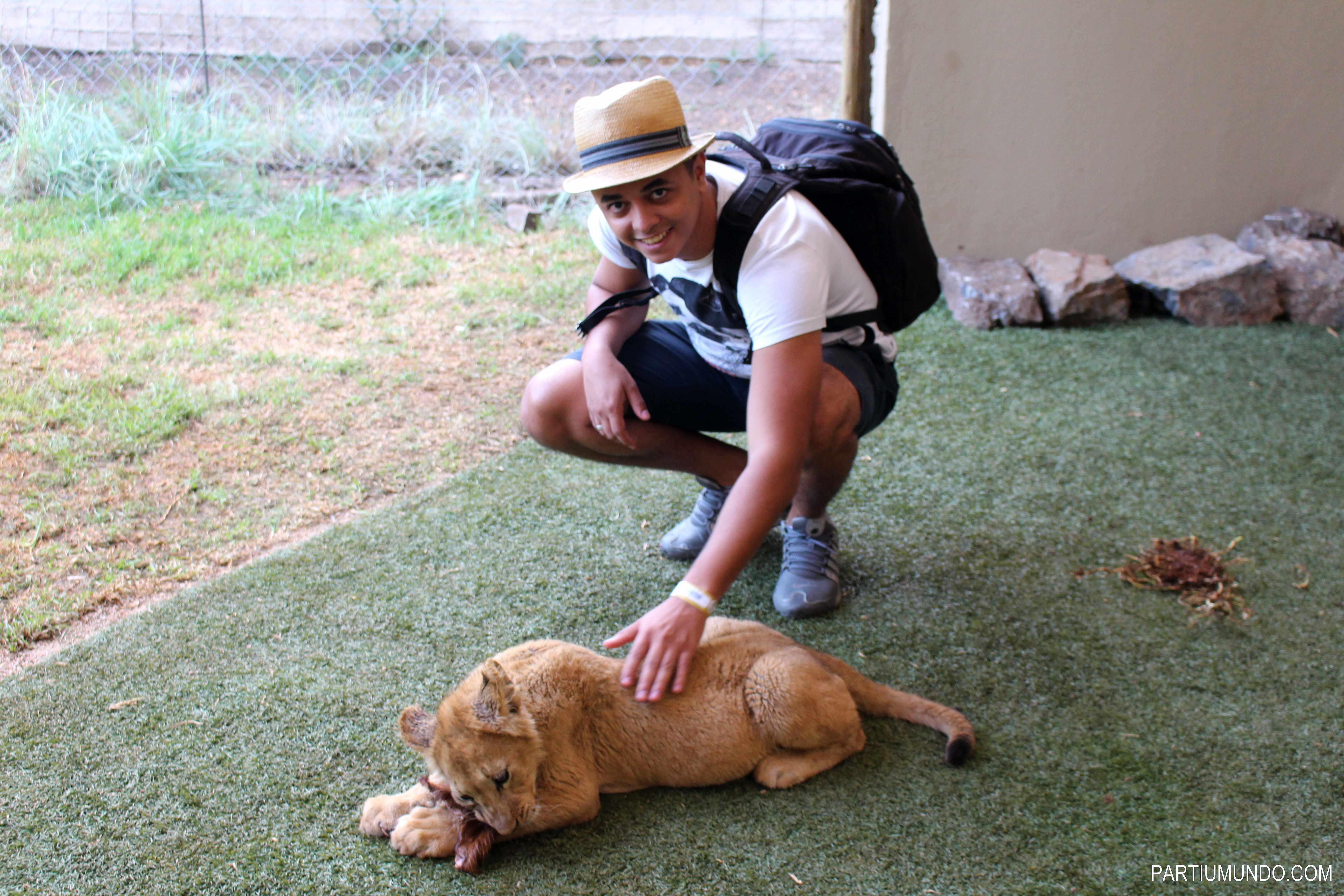 Lion and Safari Park 20