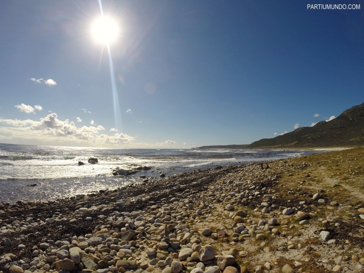 rsz_cape_of_good_hope_and_cape_point_31