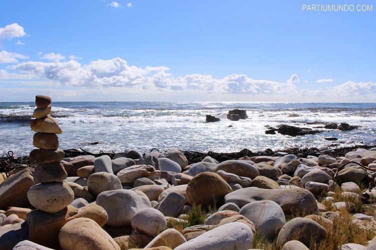 rsz_cape_of_good_hope_and_cape_point_32