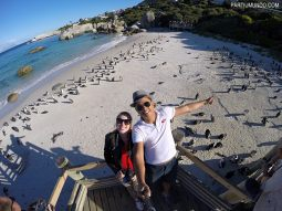 rsz_visiting_the_penguins_at_boulders_beach_13