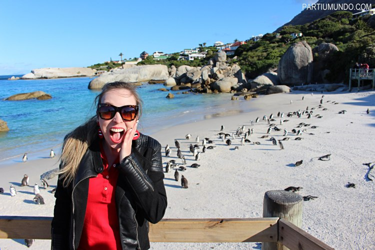 rsz_visiting_the_penguins_at_boulders_beach_8