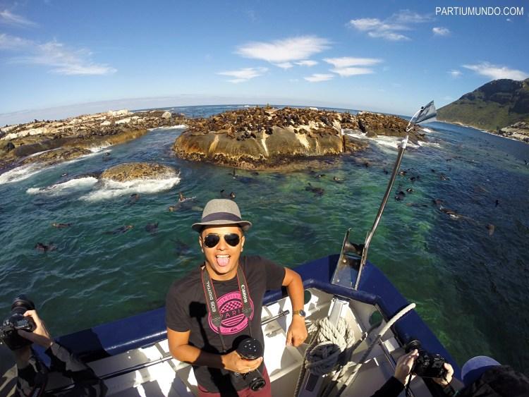Duiker Island, Cape Town
