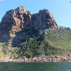 Visiting the seals at Duiker Island, Cape Town 8