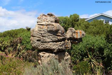 Scenic Route - Cape Town 23