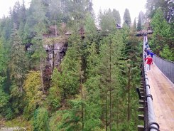 Parque Capilano Suspension Bridge 21