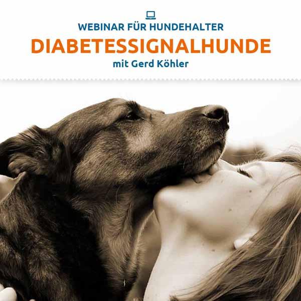 Webinar Diabetessignalhund
