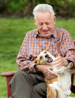 Older man playing with dog
