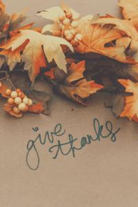 Exploring thankfulness