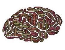 brainimages-2
