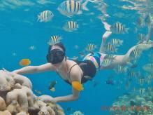 Tour snorkeling Pulau Pagang-sumatera barat