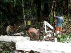 Life Experience Mentawai - Activity