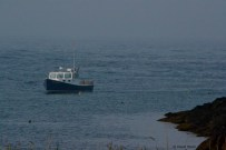 A lobster boat coming into the cove on a foggy morning