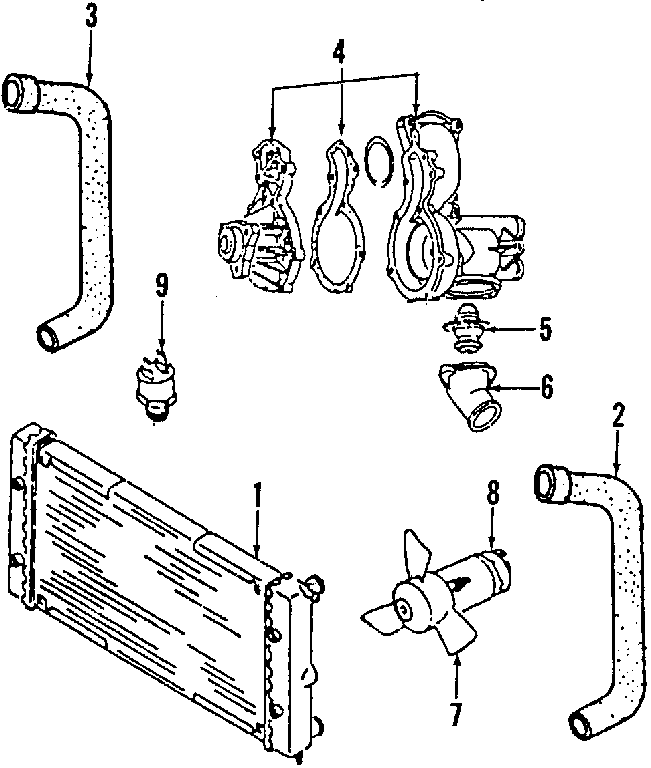 Audi 4000 Clamp. Clip. Fuel filter. Lower hose. Radiator
