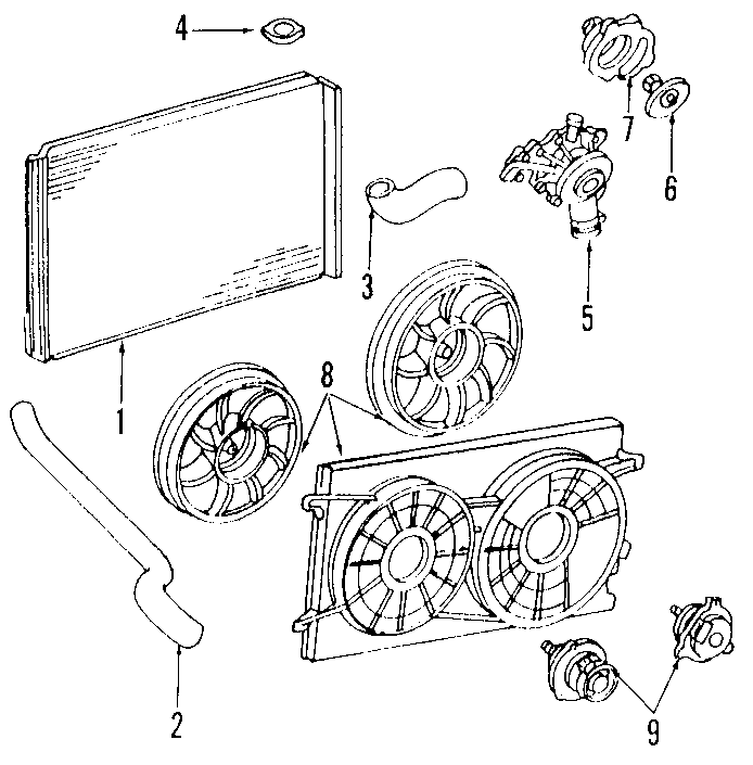 Ford Windstar Radiator Coolant Hose (Upper). 3.8 liter. 3