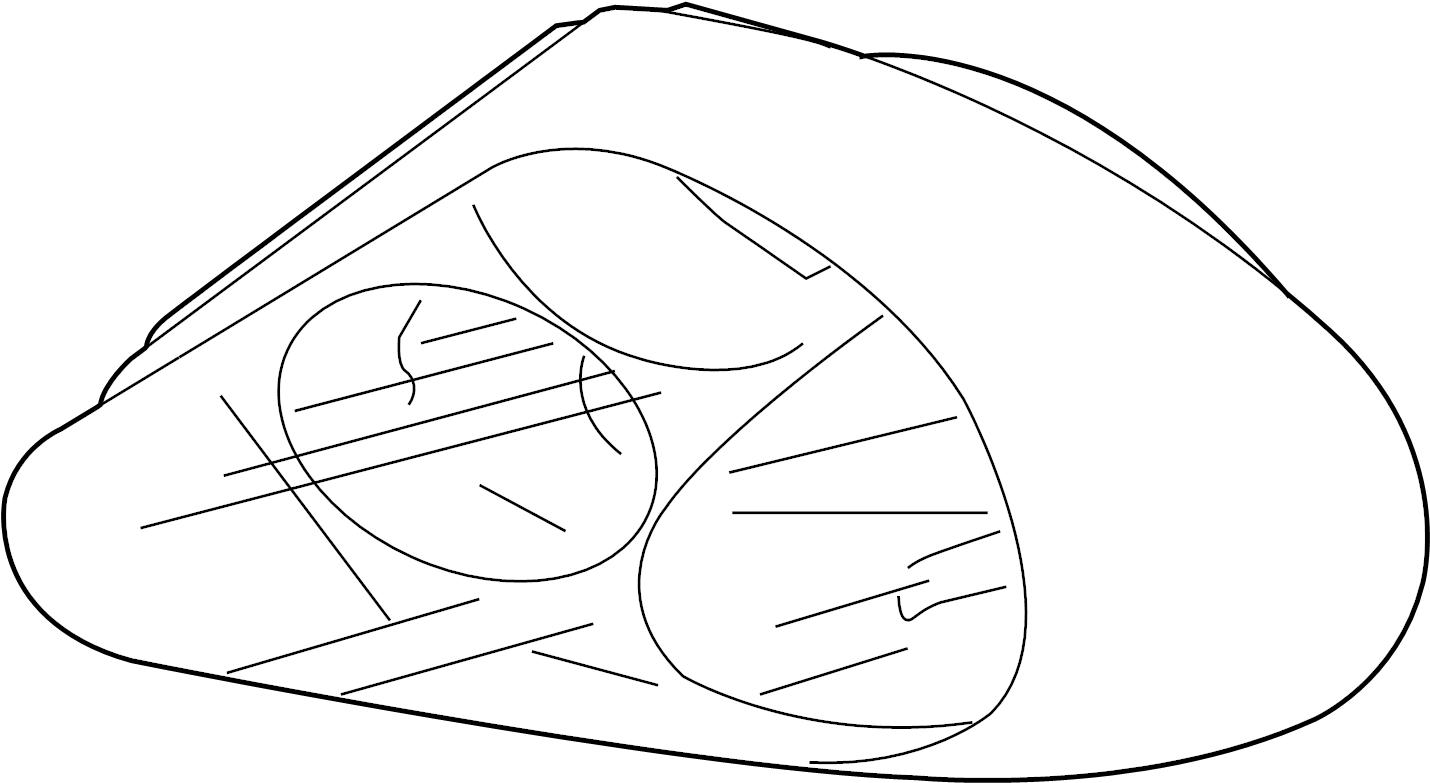 Jaguar X Type Tail Light Assembly Rear Sedan Lamps