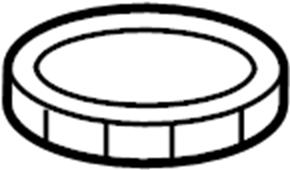 Jaguar S Type Fuel Pump Retainer Ring, Jaguar, Free Engine