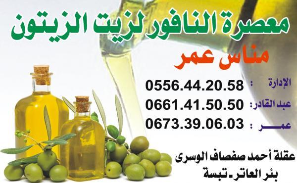 zaytoune_902738881