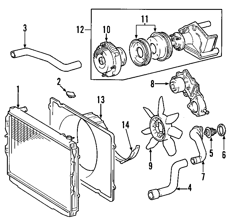 Toyota Tundra Radiator Coolant Hose (Lower). 3.4 LITER