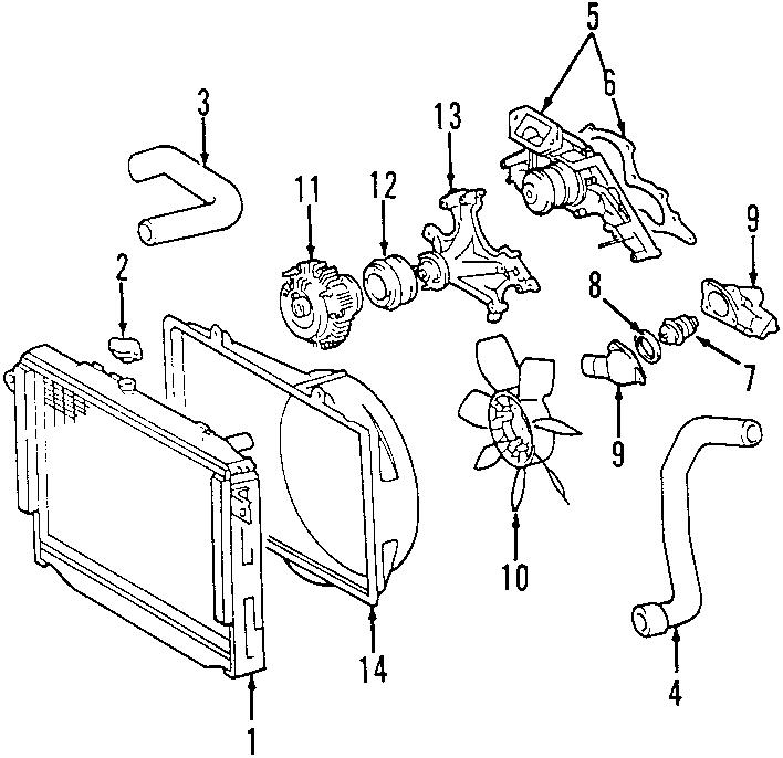 Toyota Tundra Radiator Coolant Hose (Lower). 4.7 LITER