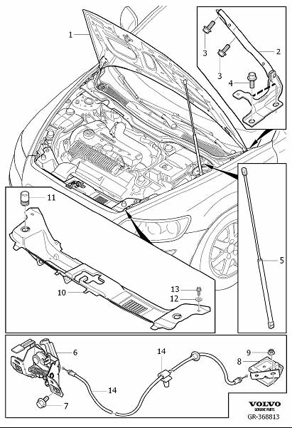 Volvo C30 Hood Hinge (Right). Engine Bonnet with Fittings