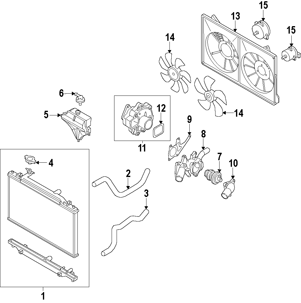 Mazda 6 Radiator Coolant Hose. LITER, NON, Lower