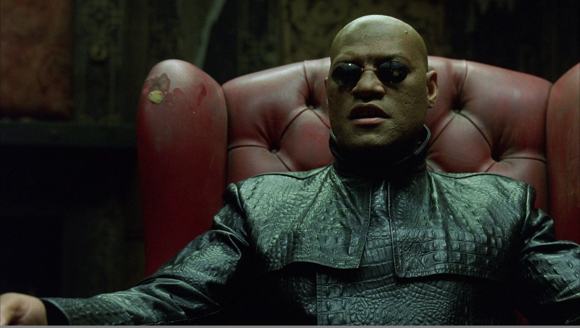 wordpress-morpheus