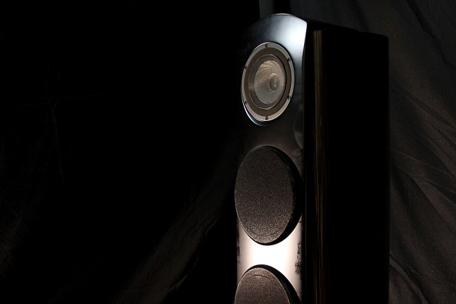 TAD Evolution One loudspeaker.