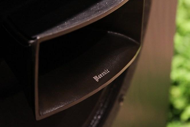 Horn detail