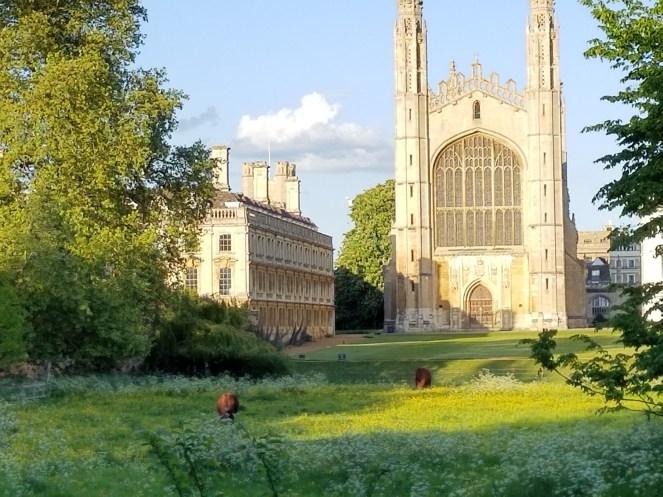 Cambridge (3)